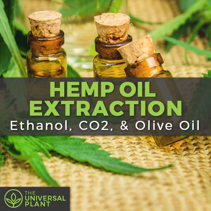 hemp extraction CO2