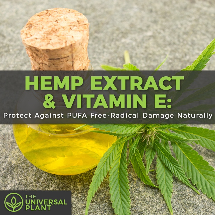 hemp extract vitamin e
