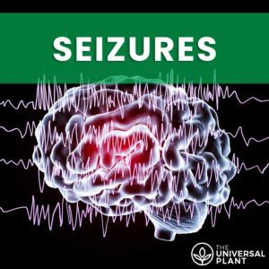 CBD for seizures featured image